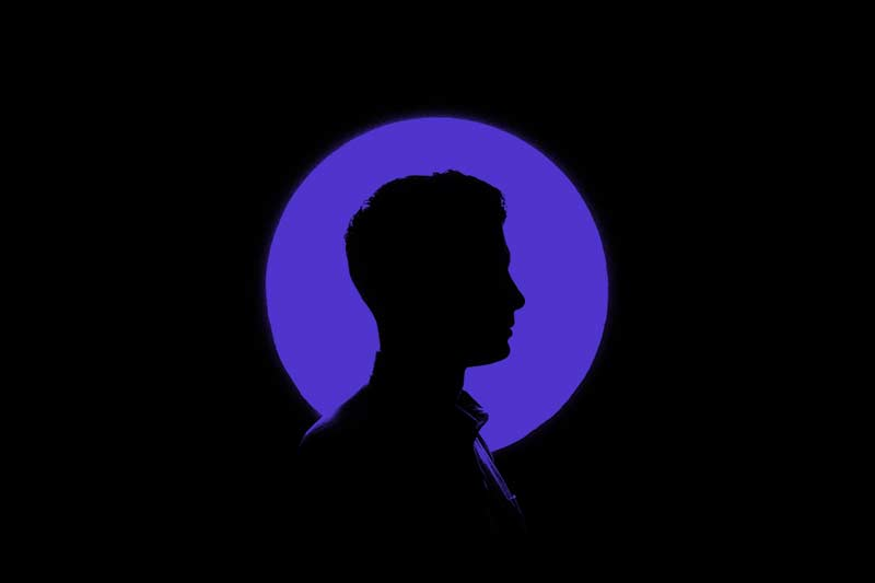 black silhouette on a purple moon background