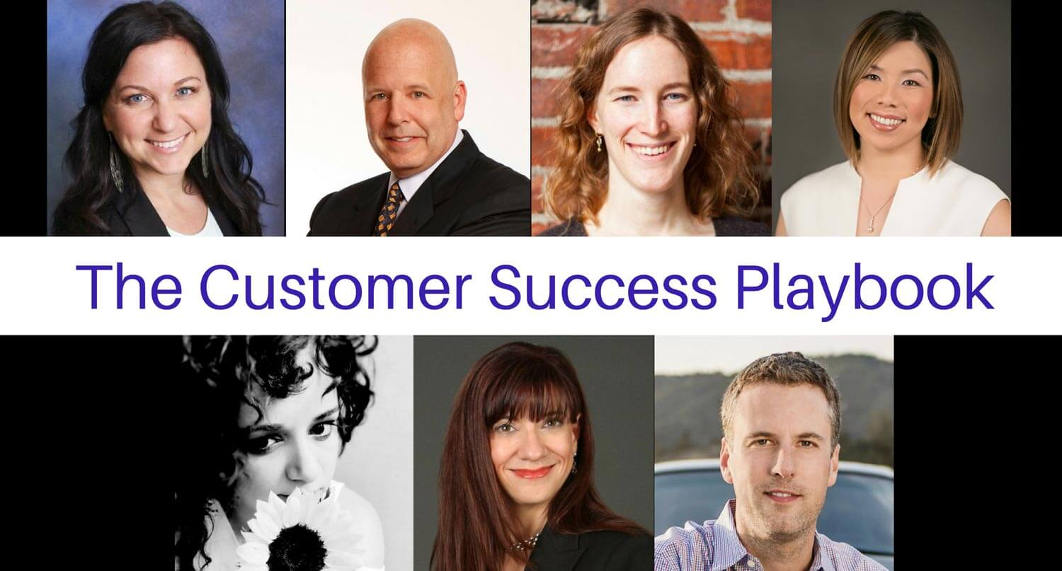 customer success playbook from Userlane