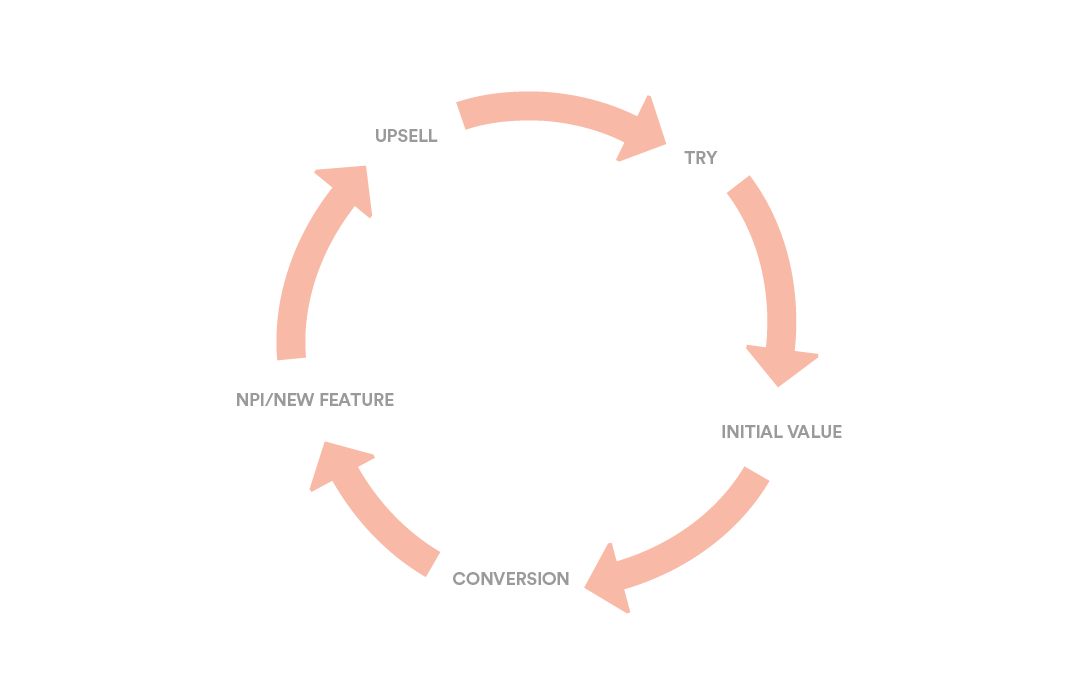 image of feature release cycle