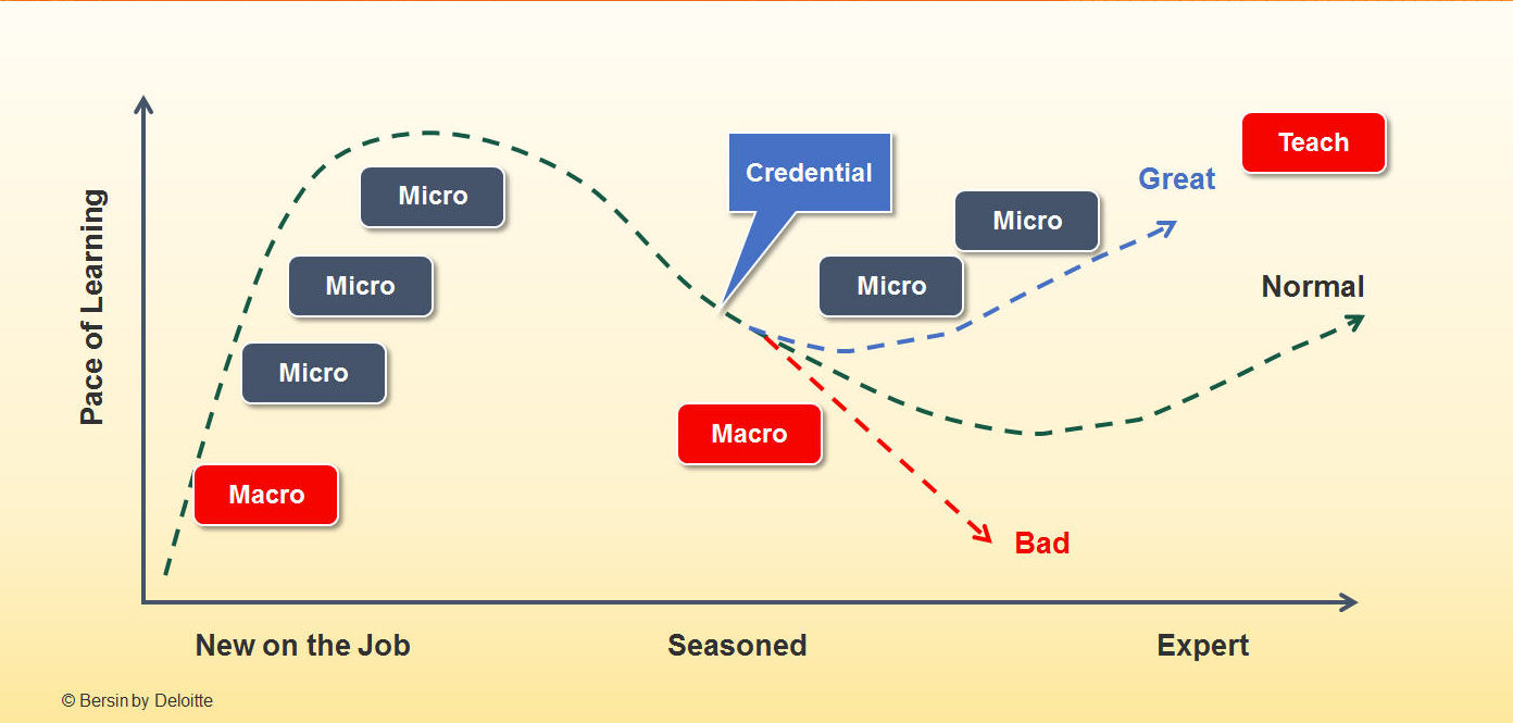 Graph of micro and macro learning vs forgetting curve