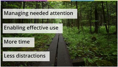 4 steps for achieving product-led growth shown on a background of a wooden walkway through nature